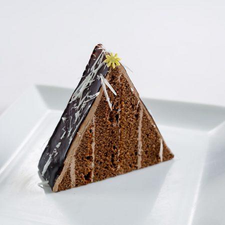 Cake Slice - Sacher